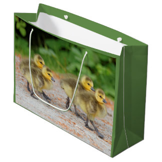 Cuteness on Parade: Canada Goose Goslings Large Gift Bag