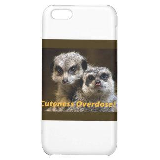 Cuteness Overdose! iPhone 5C Covers