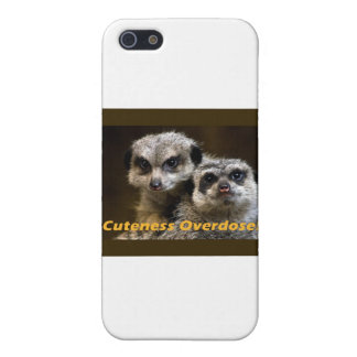 Cuteness Overdose! iPhone 5 Covers