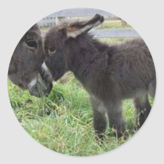 cutest burro classic round sticker