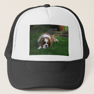 Cutest Dog In The World Is Hungry Trucker Hat