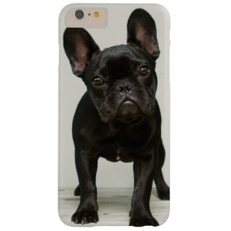 Cutest French Bulldog Puppy Barely There iPhone 6 Plus Case