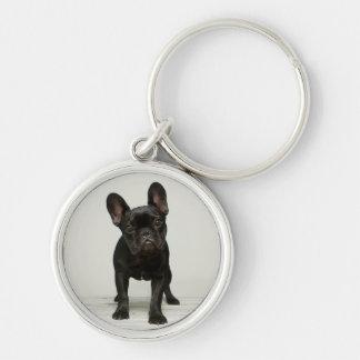 Cutest French Bulldog Puppy Key Ring