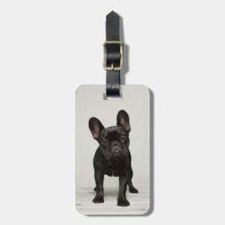 Cutest French Bulldog Puppy Tag For Luggage