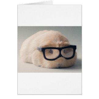 Cutest guinea pig wearing glasses card