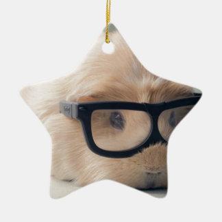 Cutest guinea pig wearing glasses ceramic star decoration