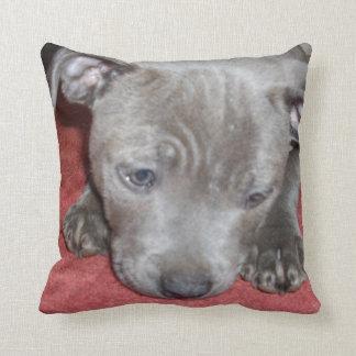 Cutest_Little_Staffordshire_Bull_Terrier_Cushion Throw Pillow