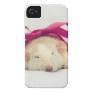 Cutest sleeping Rat with bow iPhone 4 Cases