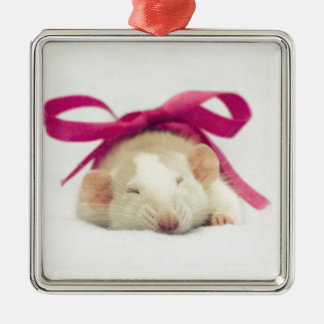 Cutest sleeping Rat with bow Silver-Colored Square Decoration