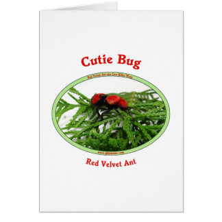 Cutie Bug Red Velvet Ant Wasp Stationery Note Card