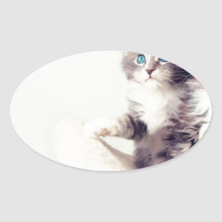 Cutie Kitties Stickers