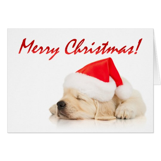 Cutie Pie! Cute Santa Puppy Merry Christmas Card
