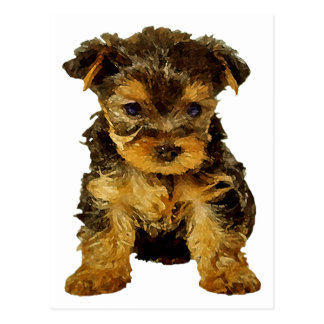 Cutie Pie, Yorkie Puppy Post Cards