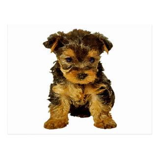 Cutie Pie, Yorkie Puppy Post Card