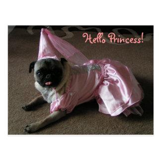 Cutie Pug Princess Postcard