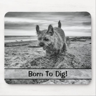 Cutom with name, Border Terrier Dog, Mousepad
