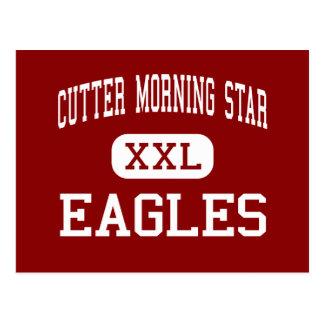 Cutter Morning Star - Eagles - High - Hot Springs Postcard