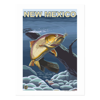 Cutthroat Trout FishingNew Mexico Post Cards