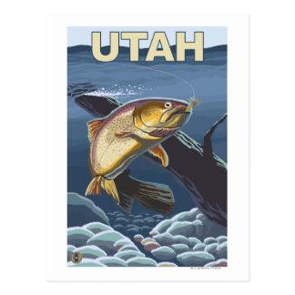 Cutthroat Trout FishingUtah Postcard