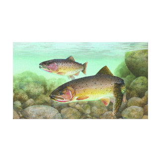 Cutthroat Trout Painting Stretched Canvas Print