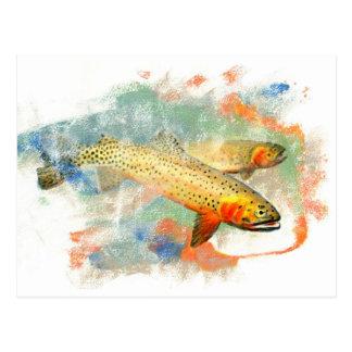 Cutthroat Trout Post Card