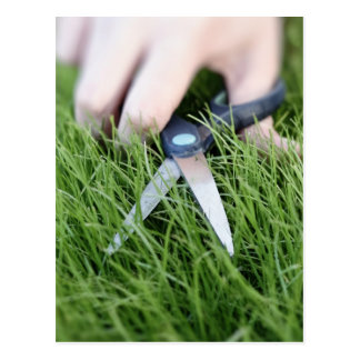 Cutting the grass with a pair of scissors post cards