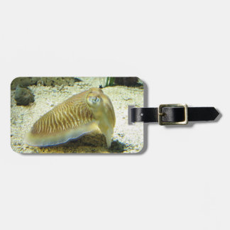 Cuttlefish Luggage Tag