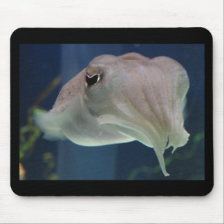 cuttlefish mouse pad