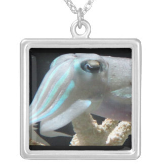 Cuttlefish necklace, square silver plated necklace