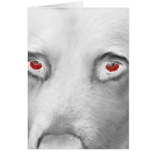 Cwn Annwn - Welsh Otherworldly Dogs of Death Card