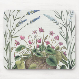 Cyclamen and Lavender: 1.Cyclamen Romanum; 2.Spica Mouse Mat