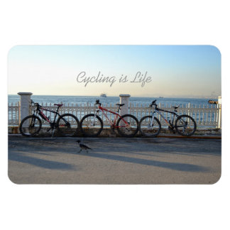 Cycling is Life Magnet