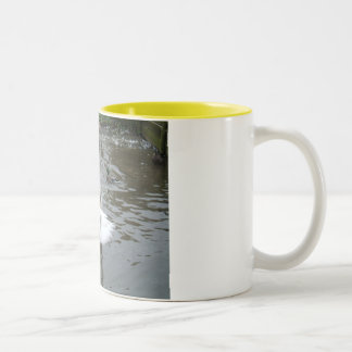 Cygnet Two-Tone Mug