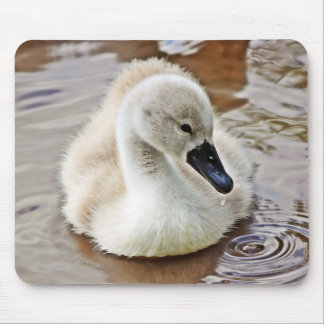 Cygnet Water Drop Mouse Pads