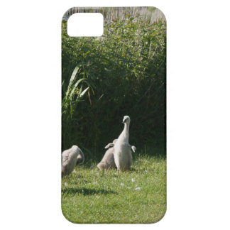 Cygnets phone cover