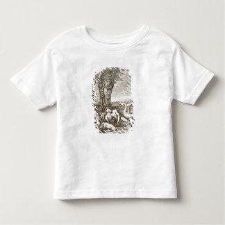 Cygnus Transformed into a Swan and Phaeton's Siste Toddler T-Shirt