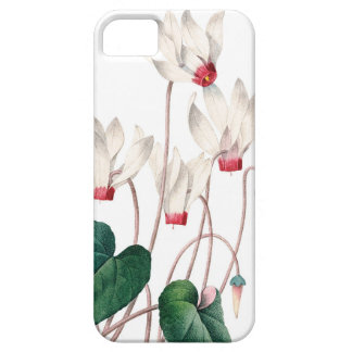 Cyklamens vintage illustration of Redoute Barely There iPhone 5 Case