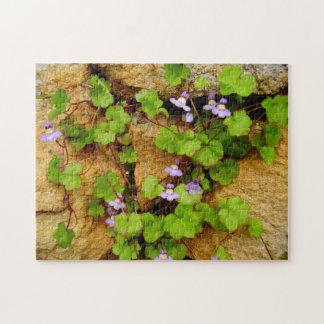 Cymbalaria Muralis Photo Puzzle