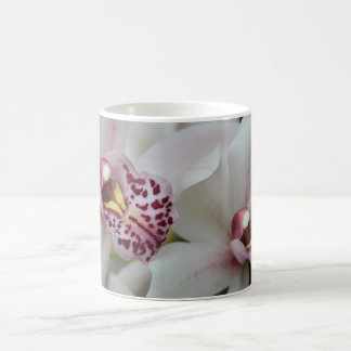 Cymbidium Orchid Coffee Mug