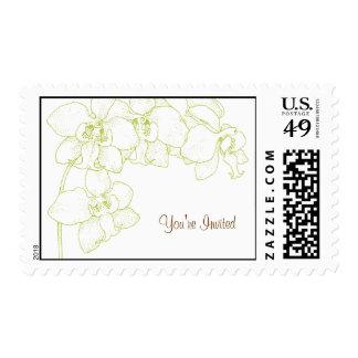 Cymbidium Orchid Postage Stamp