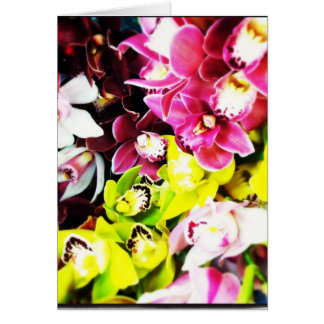 Cymbidium Orchids Blank Greeting Cards