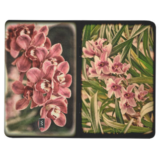 Cymbidium orchids journal