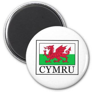 Cymru 6 Cm Round Magnet