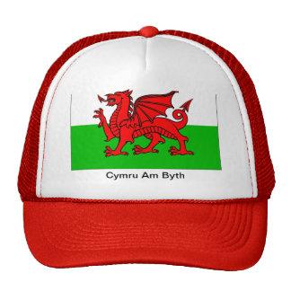 Cymru Am Byth Hat