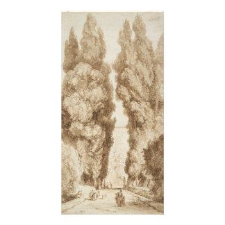 Cypress Avenue at Villa d Este Tivoli by Fragonard Picture Card
