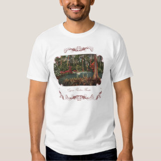 Cypress Gardens Florida Kids T-Shirt