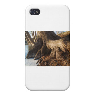 Cypress Roots Case For iPhone 4