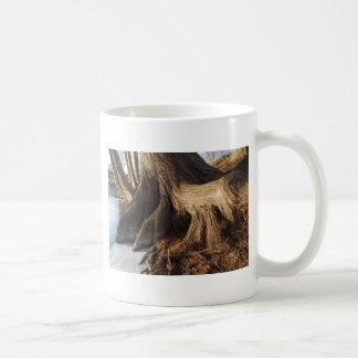 Cypress Roots Mug