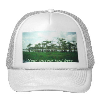 Cypress Sentries Custom Hat