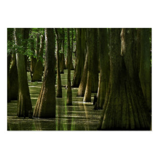 Cypress Swamp ATC Card Pack Of Chubby Business Cards